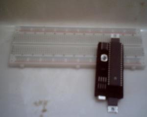 SUNP0029